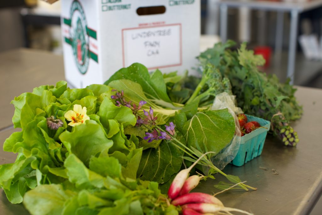 Farmshare from Lindentree Farm